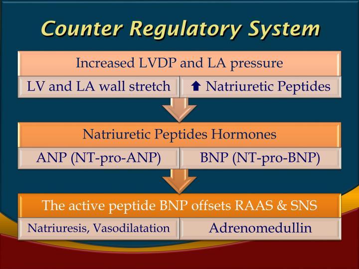 Counter Regulatory System
