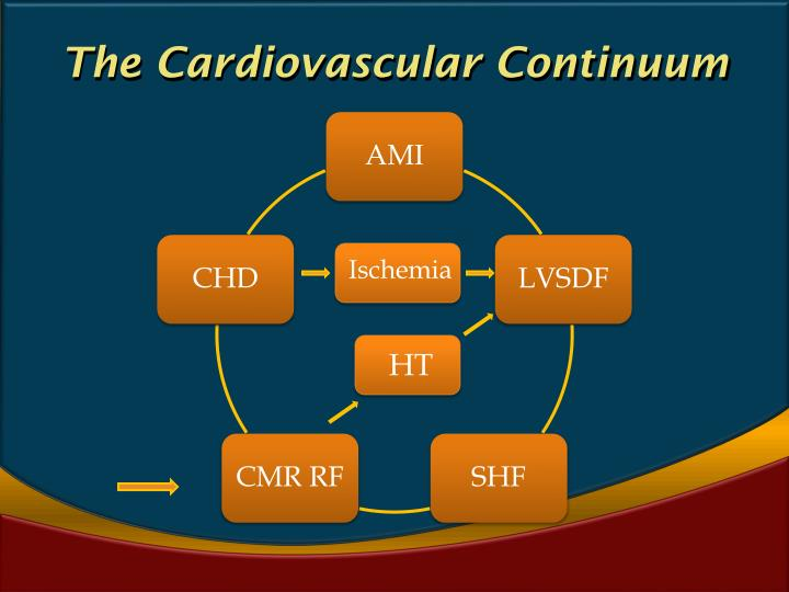 The Cardiovascular Continuum