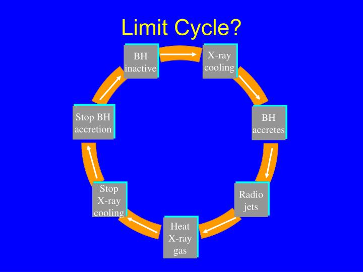 Limit Cycle?