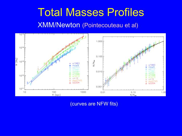 Total Masses Profiles