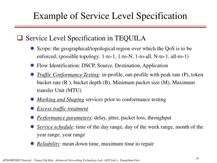 Example of Service Level Specification