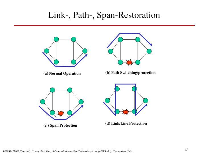 Link-, Path-, Span-Restoration