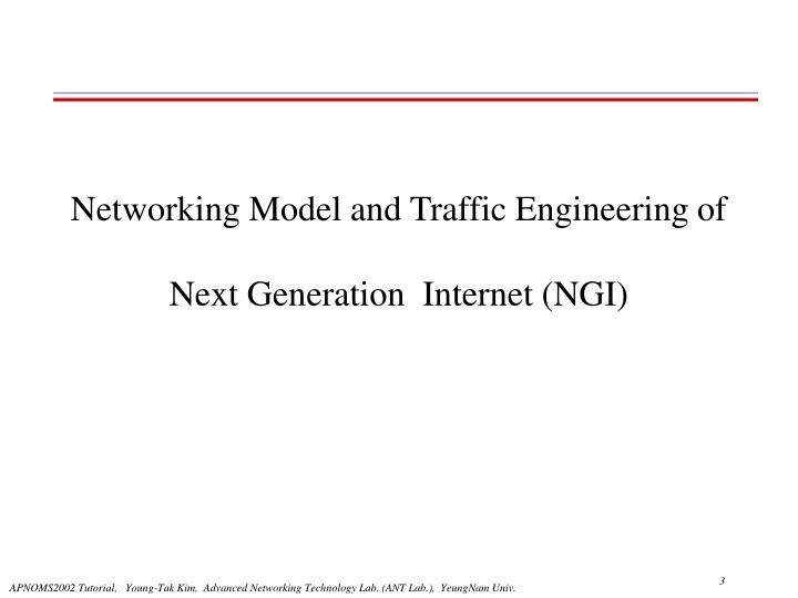 Networking model and traffic engineering of next generation internet ngi