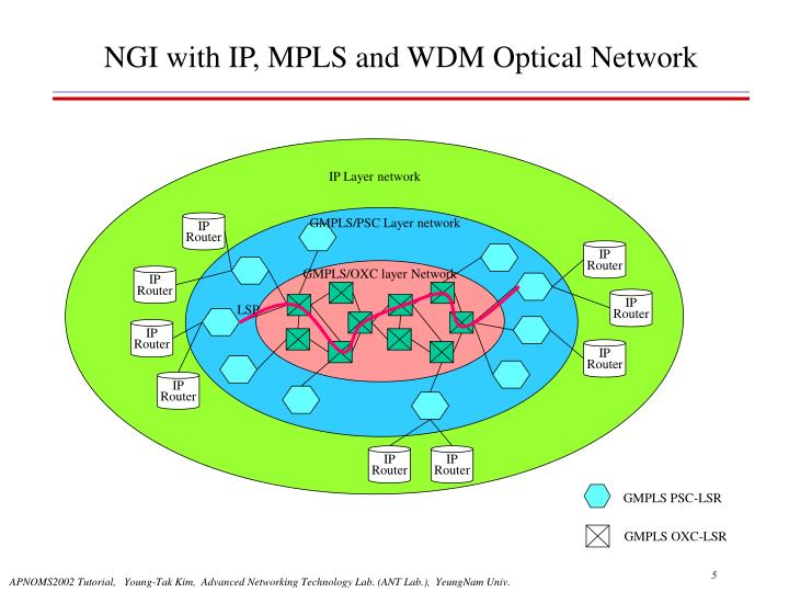 IP Layer network