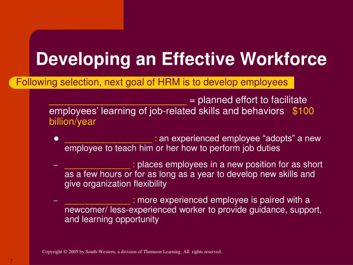 Developing an Effective Workforce