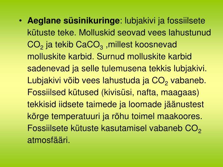 Aeglane süsinikuringe