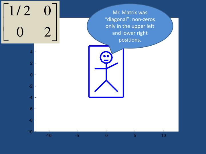 "Mr. Matrix was ""diagonal"": non-zeros only in the upper left and lower right positions."
