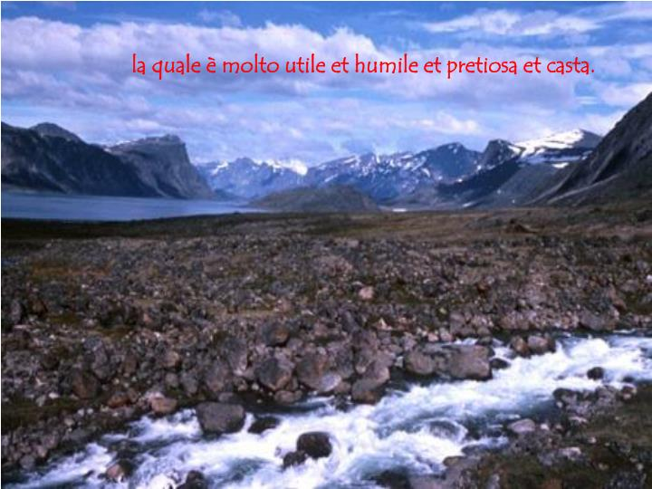 la quale è molto utile et humile et pretiosa et casta.