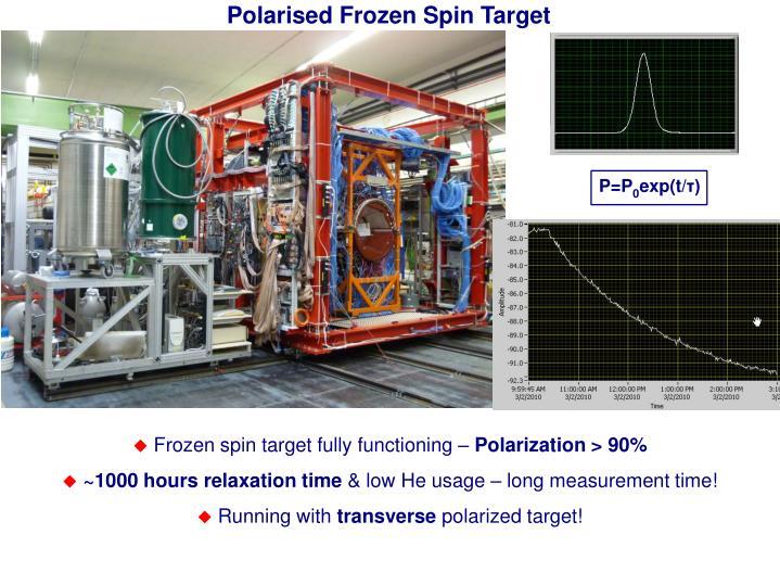 Polarised Frozen Spin Target