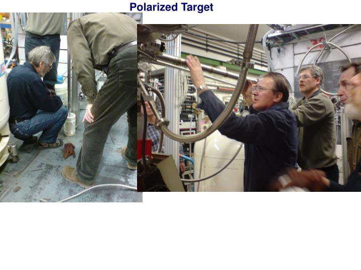 Polarized Target