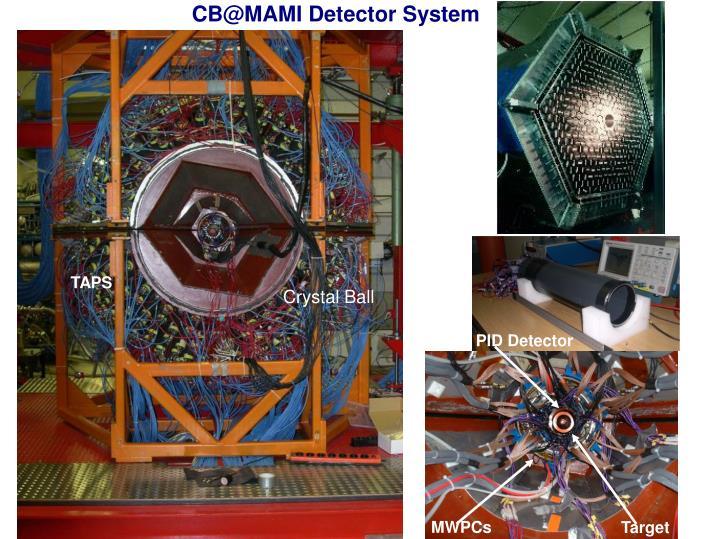 CB@MAMI Detector System