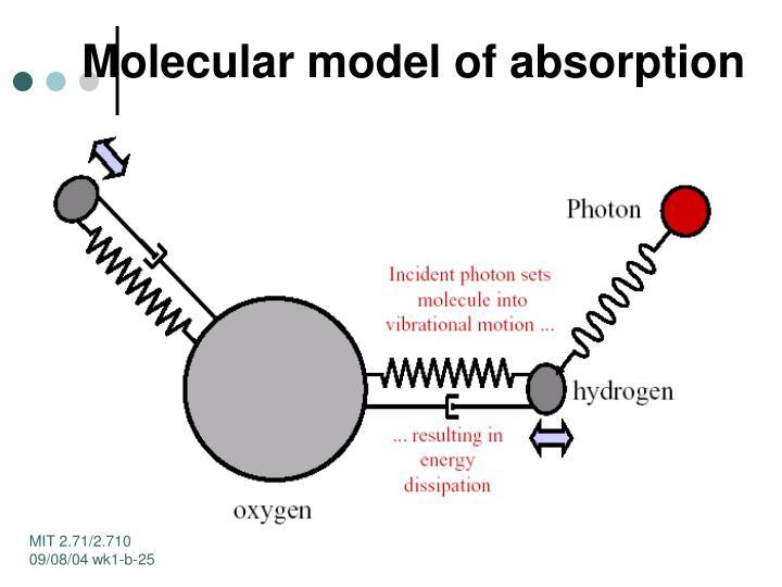 Molecular model of absorption