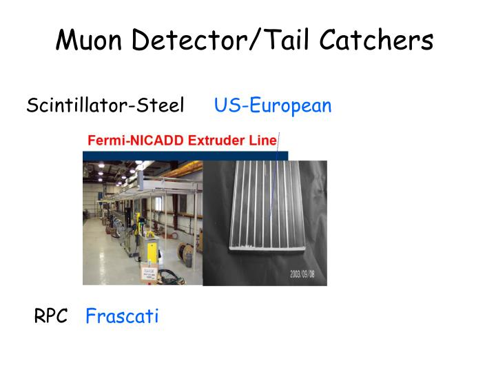 Muon Detector/Tail Catchers