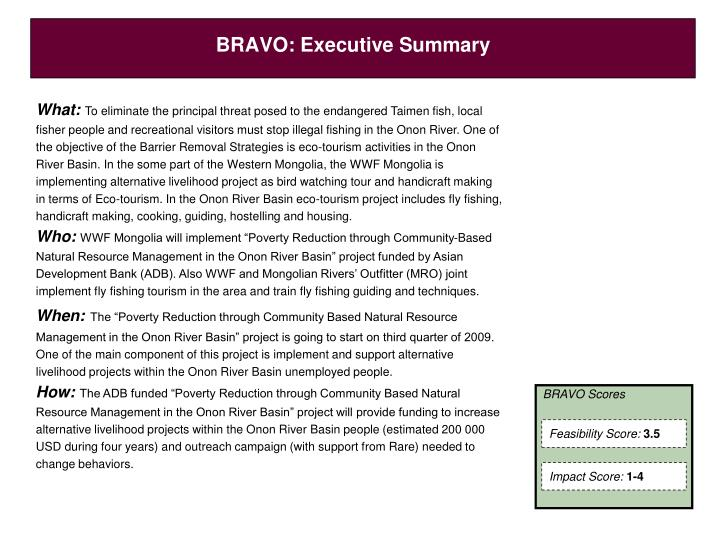 Bravo executive summary