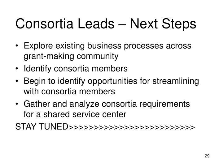 Consortia Leads – Next Steps