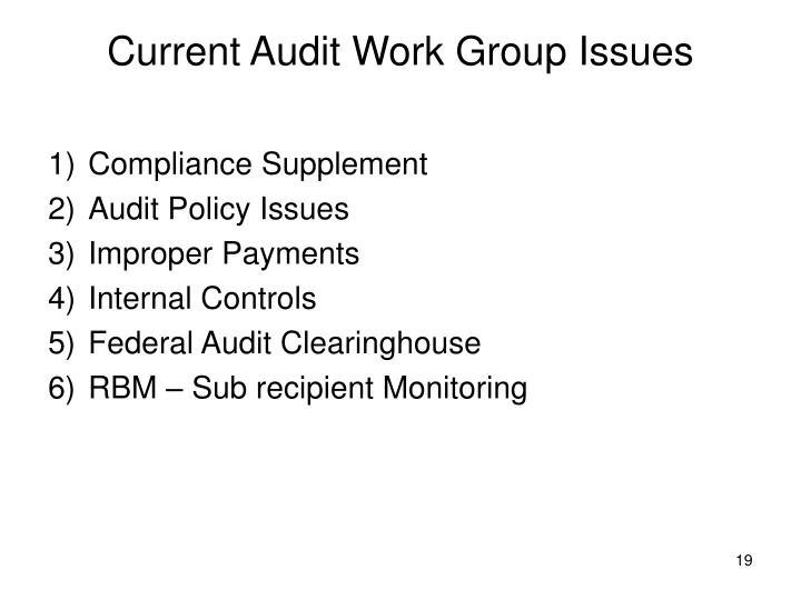 Current Audit Work Group Issues