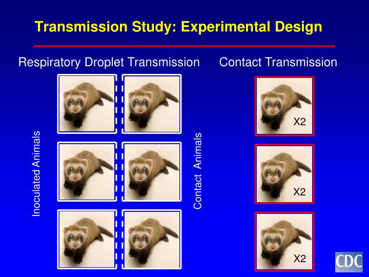 Transmission Study: Experimental Design