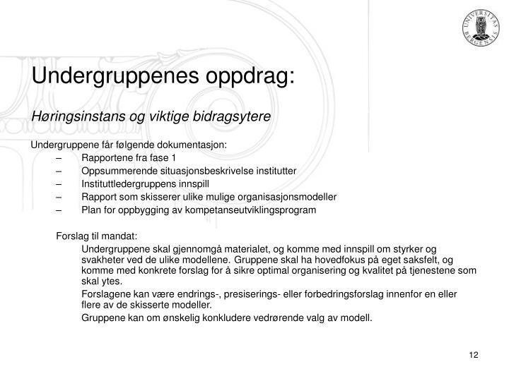 Undergruppenes oppdrag: