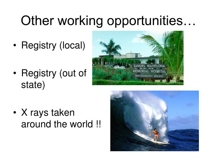 Other working opportunities…