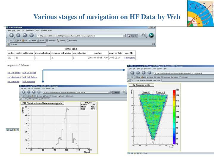 Various stages of navigation on HF Data by Web