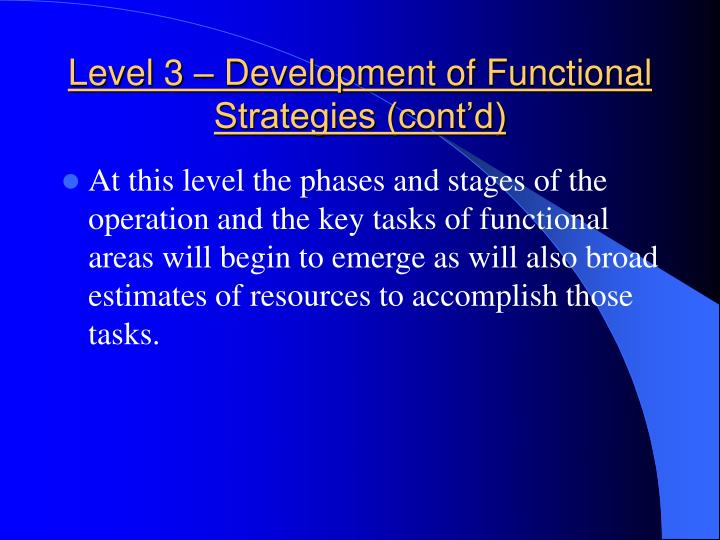 Level 3 – Development of Functional Strategies (cont'd)