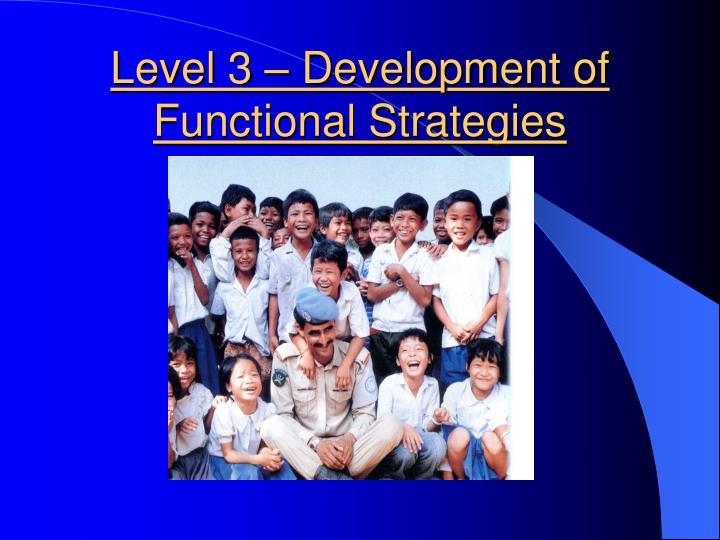 Level 3 – Development of Functional Strategies