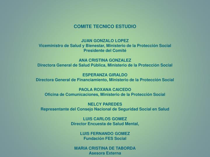 COMITE TECNICO ESTUDIO
