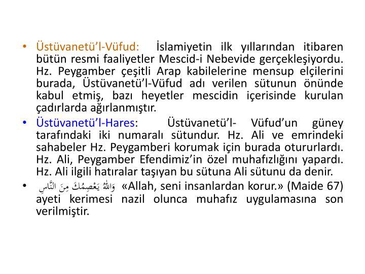 stvanetl-Vfud: