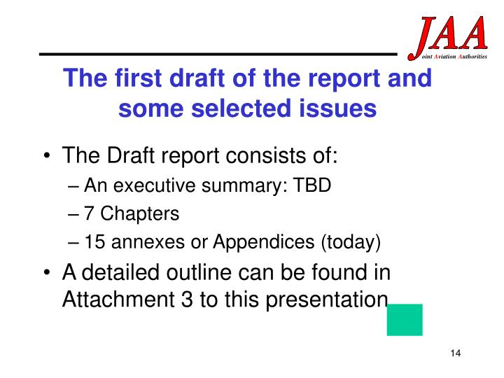 The first draft of the report and some selected issues