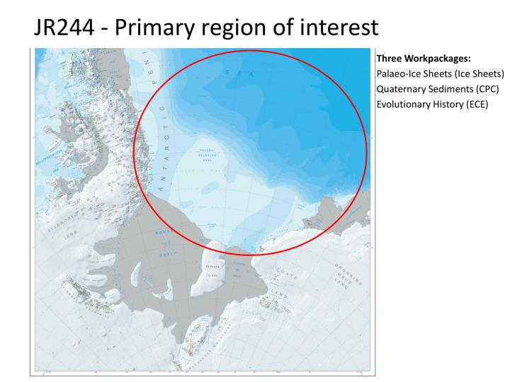 Jr244 primary region of interest