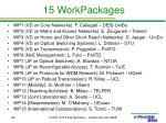 15 workpackages