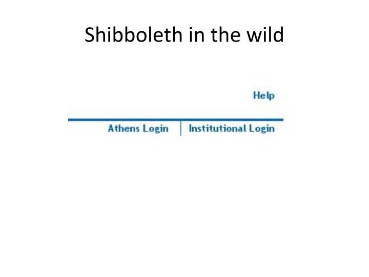 Shibboleth in the wild