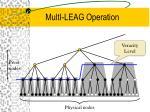multi leag operation