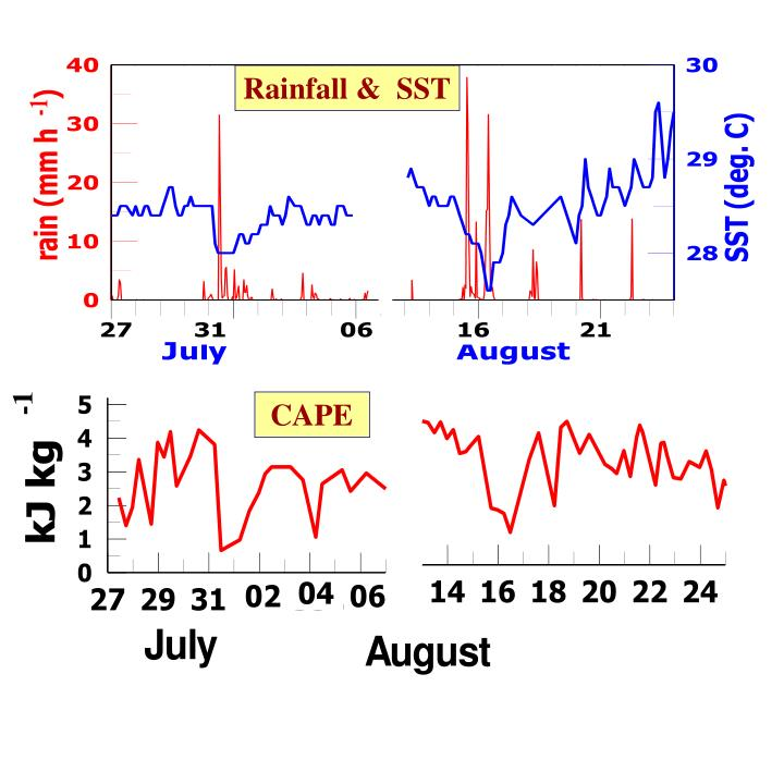 Rainfall &  SST