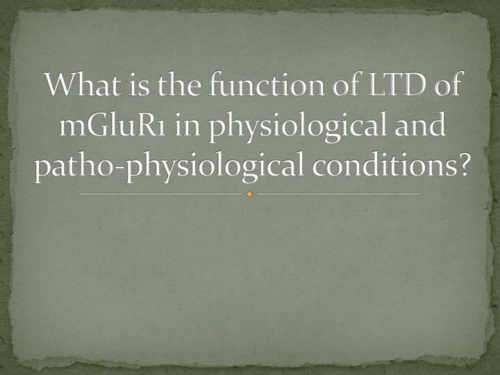 What is the function of LTD of mGluR1 in physiological and patho-physiological conditions?
