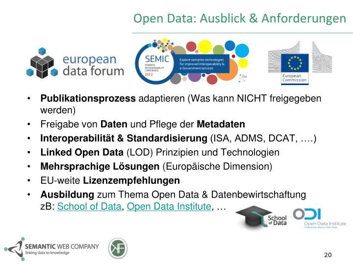 Open Data: Ausblick & Anforderungen