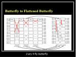 butterfly to flattened butterfly1