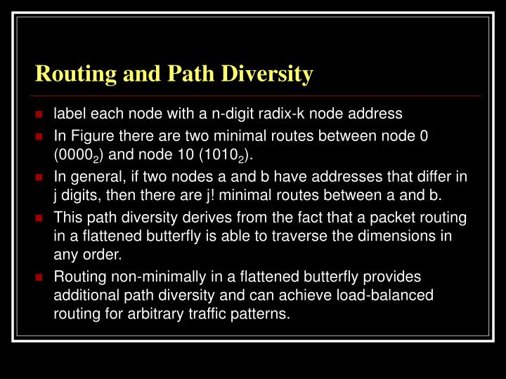 Routing and Path Diversity