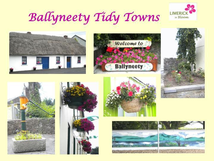 Ballyneety Tidy Towns