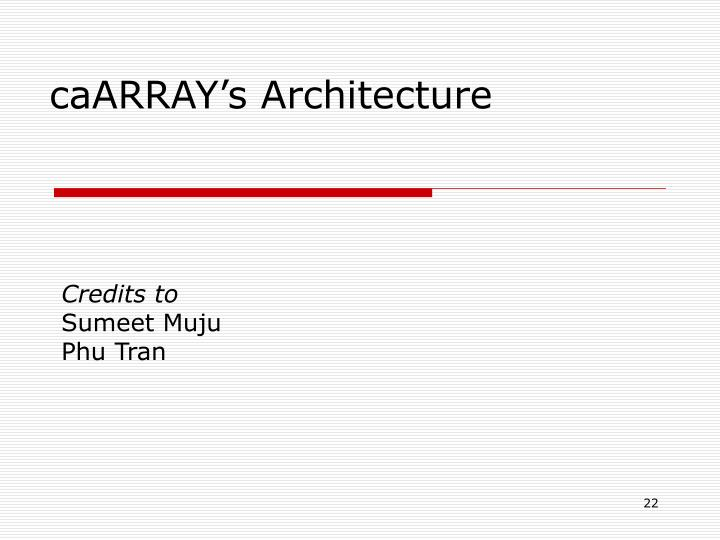 caARRAY's Architecture