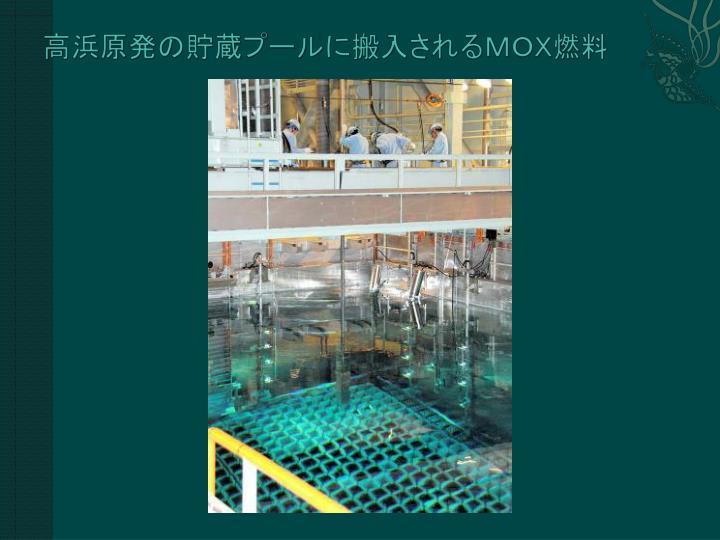 高浜原発の貯蔵プールに搬入されるMOX燃料