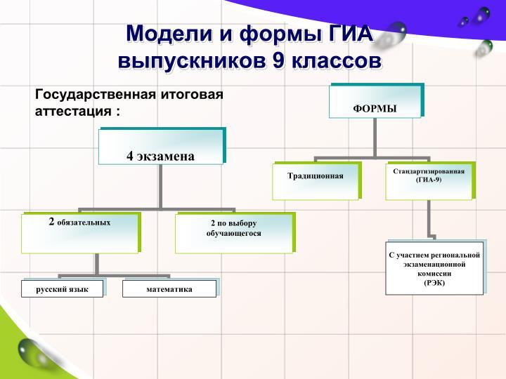 Модели и формы ГИА