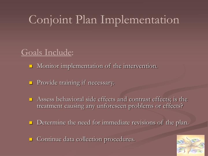 Conjoint Plan Implementation