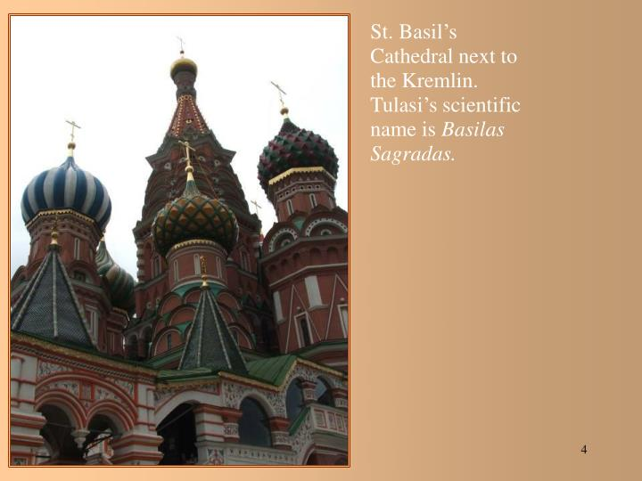 St. Basil's Cathedral next to the Kremlin.  Tulasi's scientific name is
