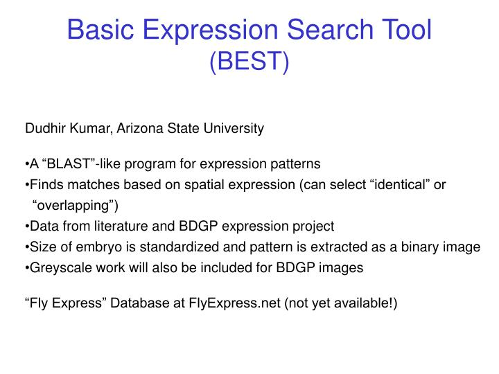 Basic Expression Search Tool