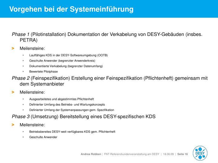 Vorgehen bei der Systemeinführung