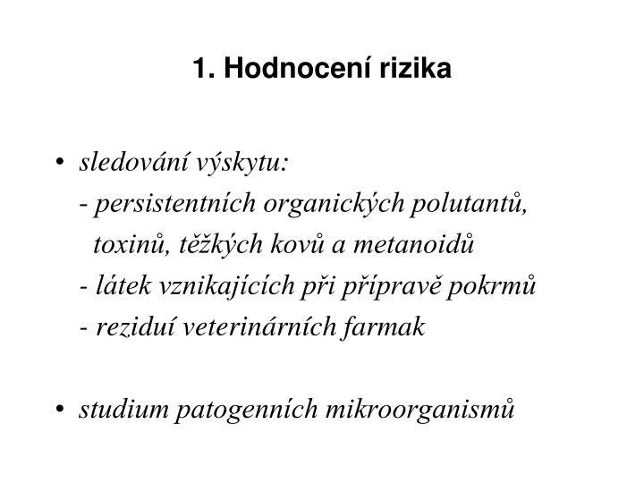 1. Hodnocení rizika