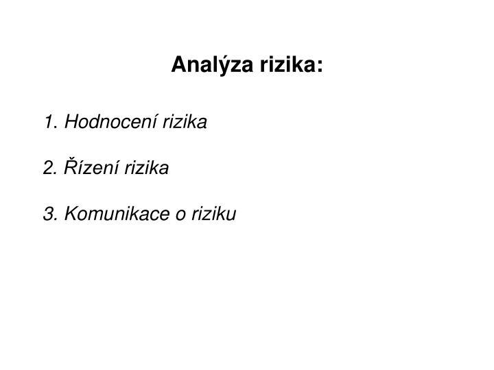 Analýza rizika: