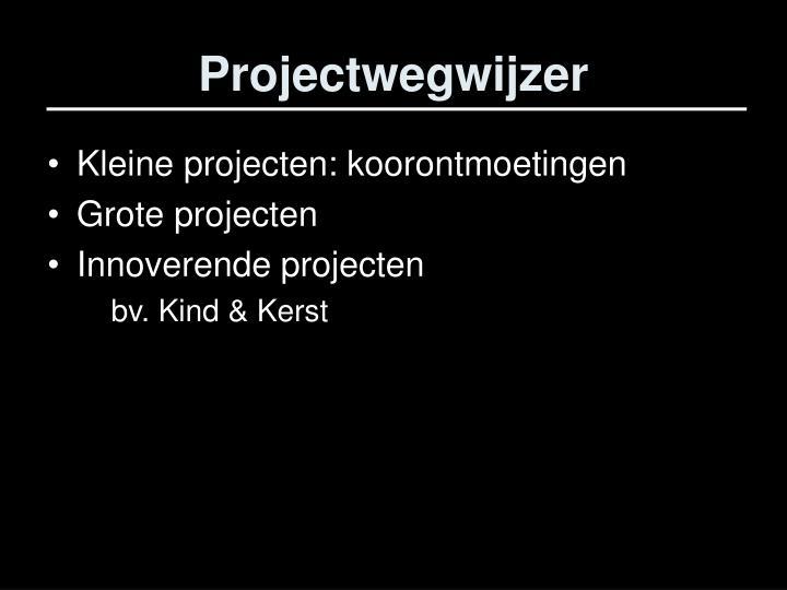 Projectwegwijzer