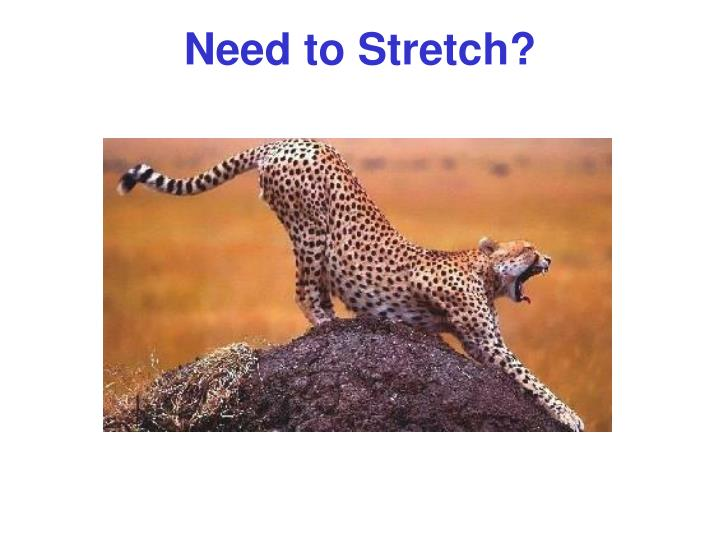 Need to Stretch?